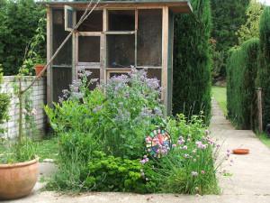 Durch und durch vogelfreundlich: In diesem Garten gibt es vor der Auswilderungsvoliere für Kleinvögel viele nektarreiche Blumen, die Insekten anlocken, die wiederum Nahrung für Vögel sind, © Dagmar Offermann